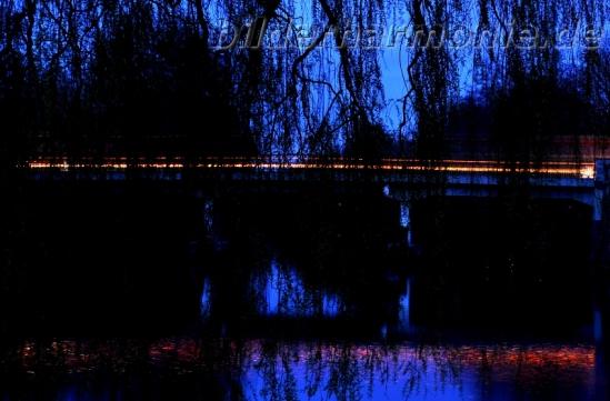 Vorhang auf, Bühne frei - Alsterwanderweg bei Nacht